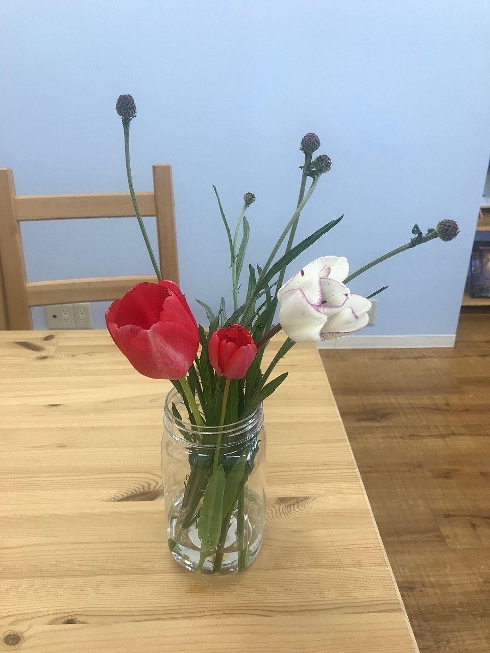 流山セントラルパーク駅近くの農園で栽培されたお花です。