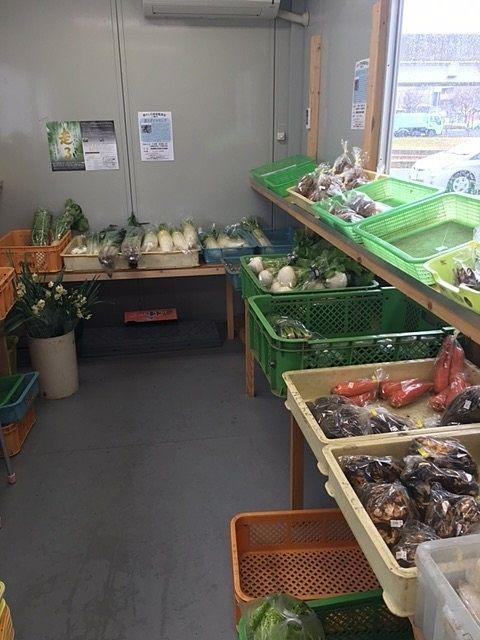 新鮮な野菜の販売所をご紹介@流山セントラルパーク