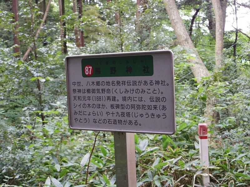 熊野神社は千葉県流山市で中世からある神社です。