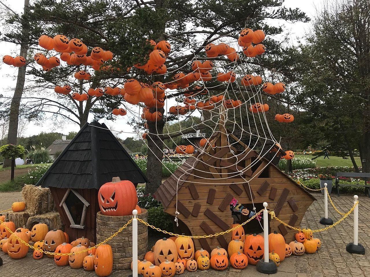 ふなばしアンデルセン公園はハロウィンの飾りつけがされています
