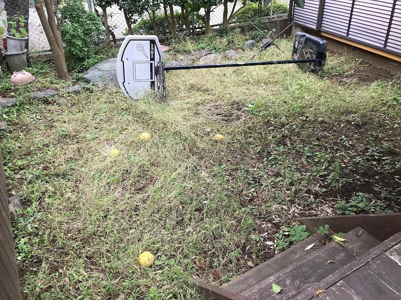 夏に草刈をしたそうですがあっという間に伸びてしまいますね。柏市内のお宅ですが、この辺りなら出張いたします。