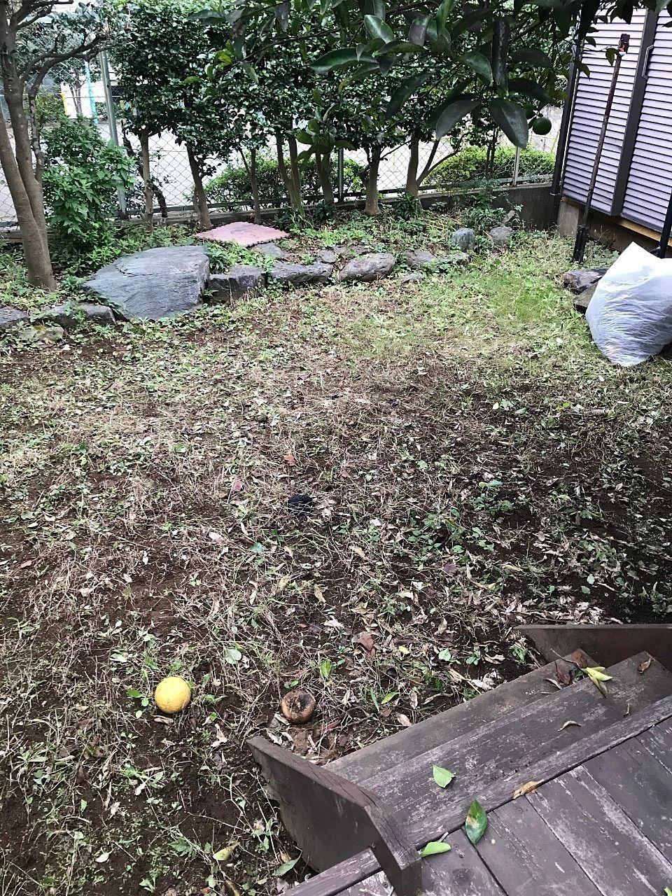 今回2名のスタッフで草刈を担当しました。鎌だけでここまで綺麗になります。