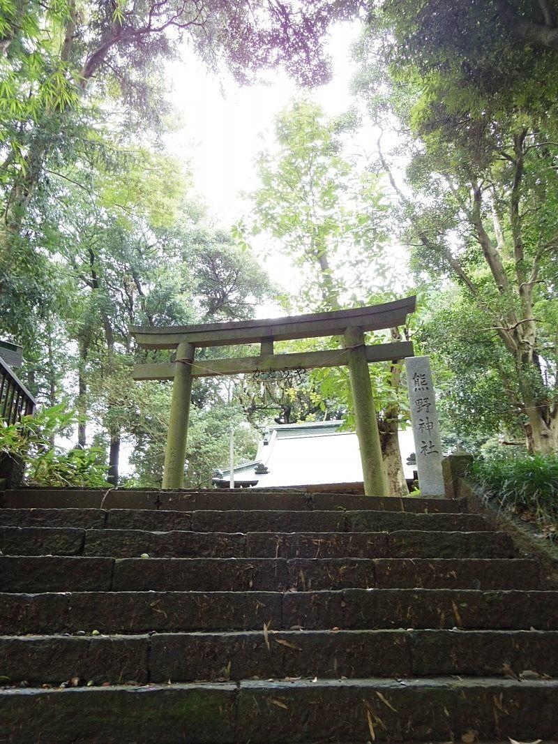 流山市思井にある熊野神社、藤原家は恒例の初詣に行ってきました。