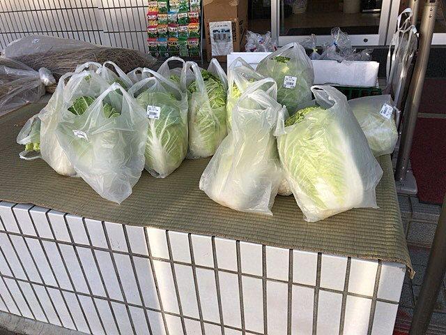 流山市の直売所、新鮮食味の新鮮な白菜